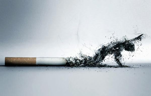 Варикоз и курение | как курение влияет на развитие варикоза